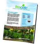 Procidic Almonds Flyer