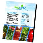 Procidic Apples and Pears Flyer
